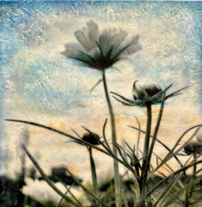 Encaustic painting and photography