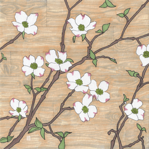 Dogwood flower illustraion