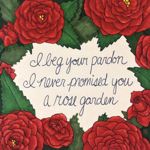 Shrub Rose illustration