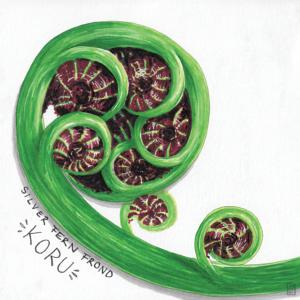 fern frond illustration